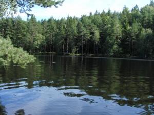 Barnsjön Tyresö