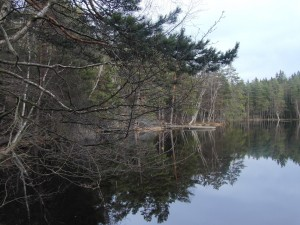 Barnsjön i Tyresö